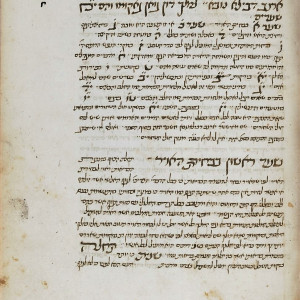 14. Manuscript of the Hebrew translation by Samuel ben David Eben-Soham, alias Burla, done from Sarriera's Catalan one in Taranto in 1466 (Paris, BnF, MS Hebrew 1128, f. 95r, 15th C).