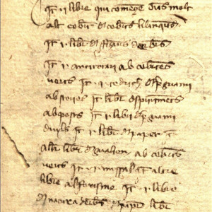 9. Inventory of the library of Pere Ritxard, a surgeon from Santa Coloma de Queralt, made in 1363 (Montblanc, Arxiu Comarcal de la Conca de Barberà, Notaries de Santa Coloma de Queralt, vol. 3594.3, f. 65r).